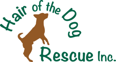 Hair of the Dog Rescue